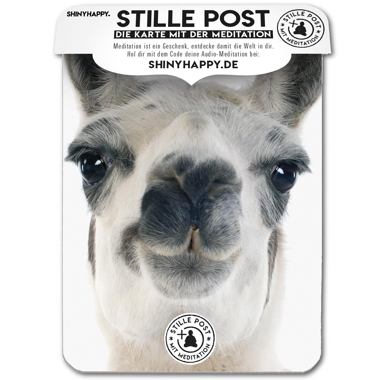 stille_post_happy_lama_A