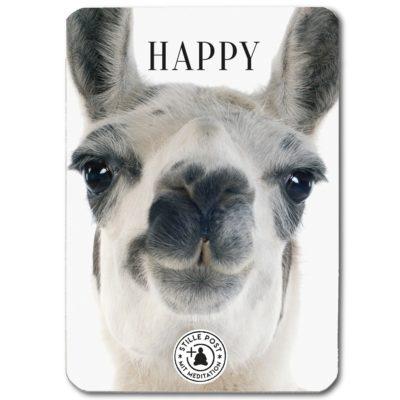 stille_post_happy_lama_B