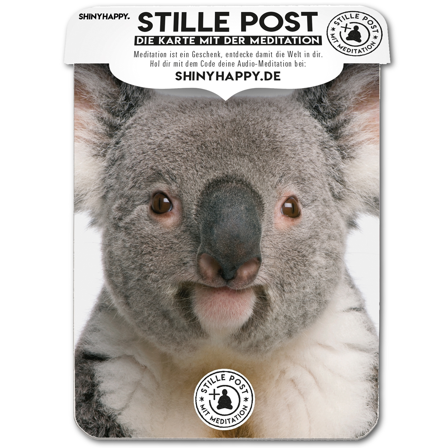 stille_post_shine_koala_A