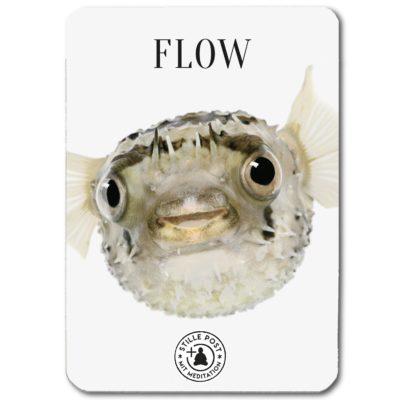 stille_post_flow_fisch_B