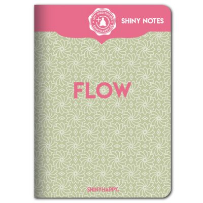 shiny_notes_flow