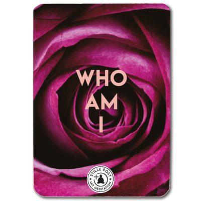 stille_post_who_am_i_B