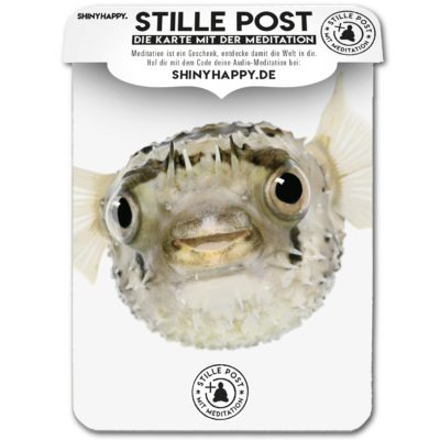 stille_post_flow_fisch_A