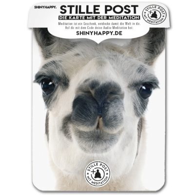 stille_post_happy_lama_A