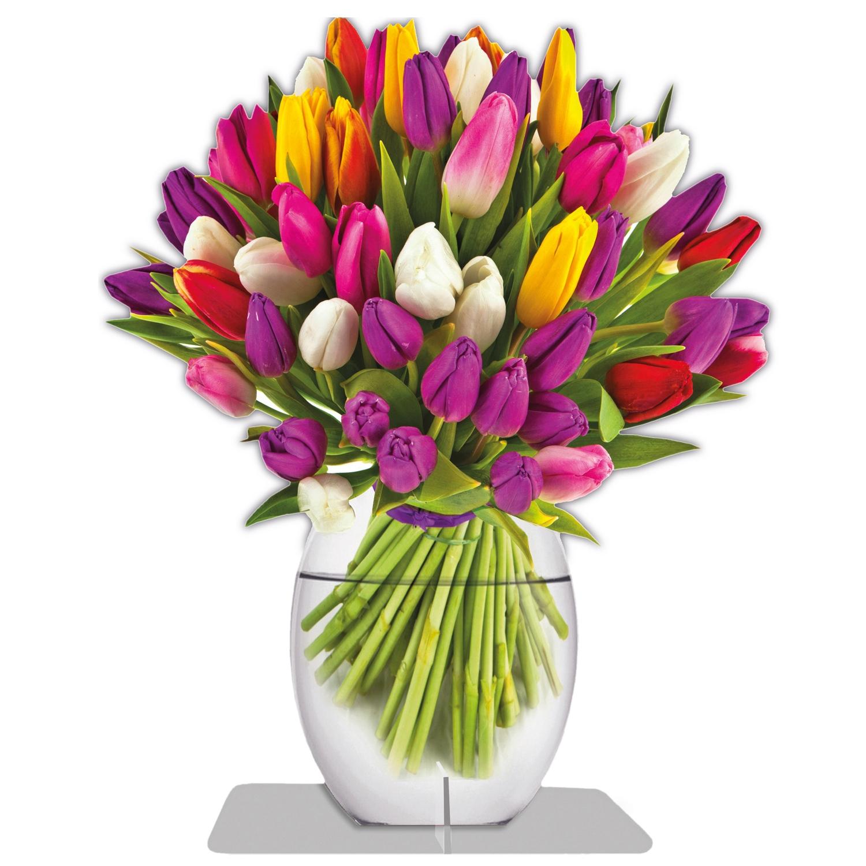 immerschoen_tulip_01